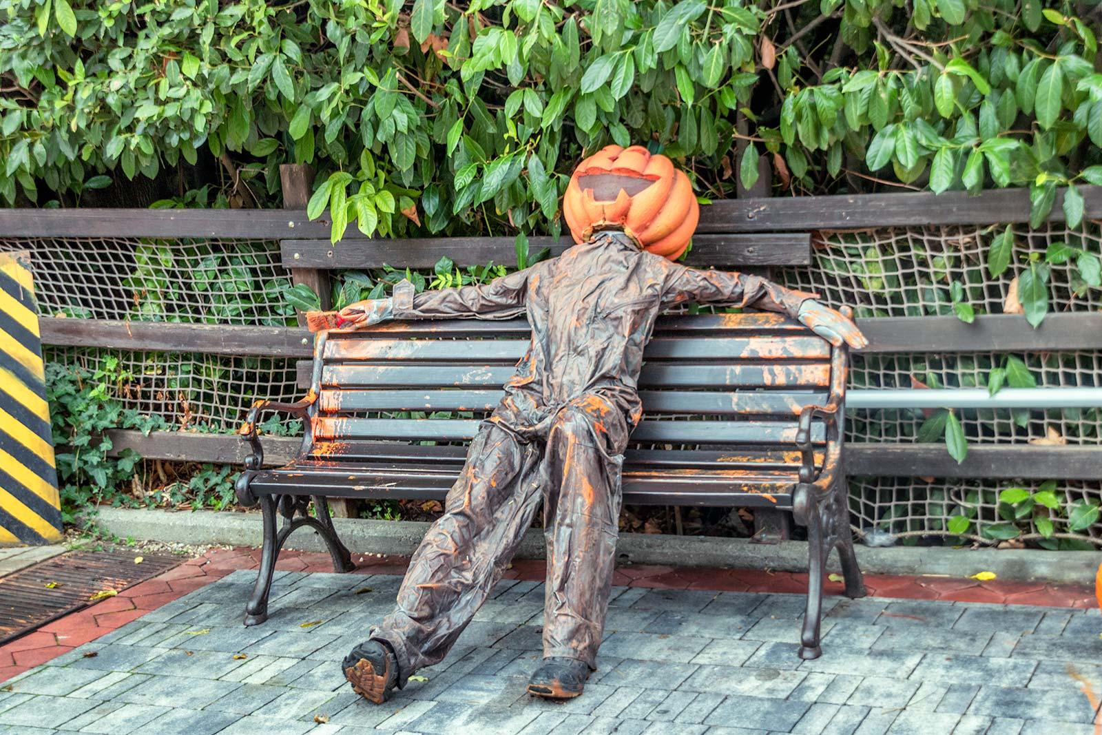 Zucca di Halloween Distrutta