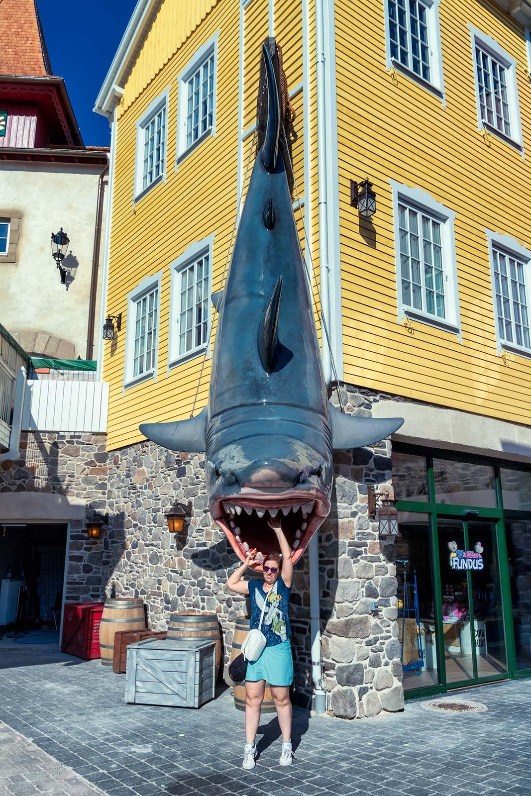 Chiara e lo squalo