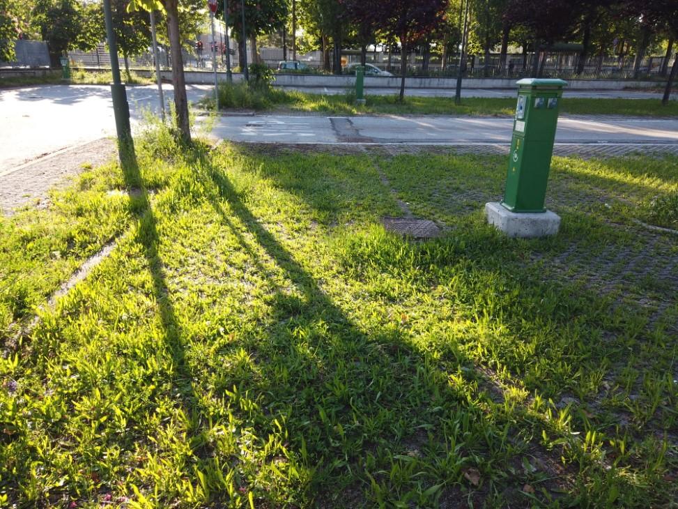 camper a Torino le colonnine