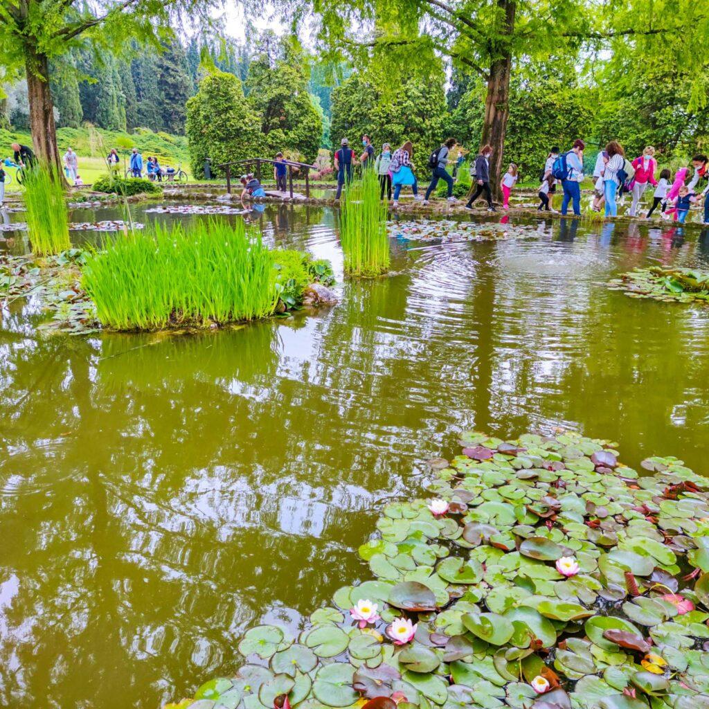 Uno dei tanti laghetti del Parco