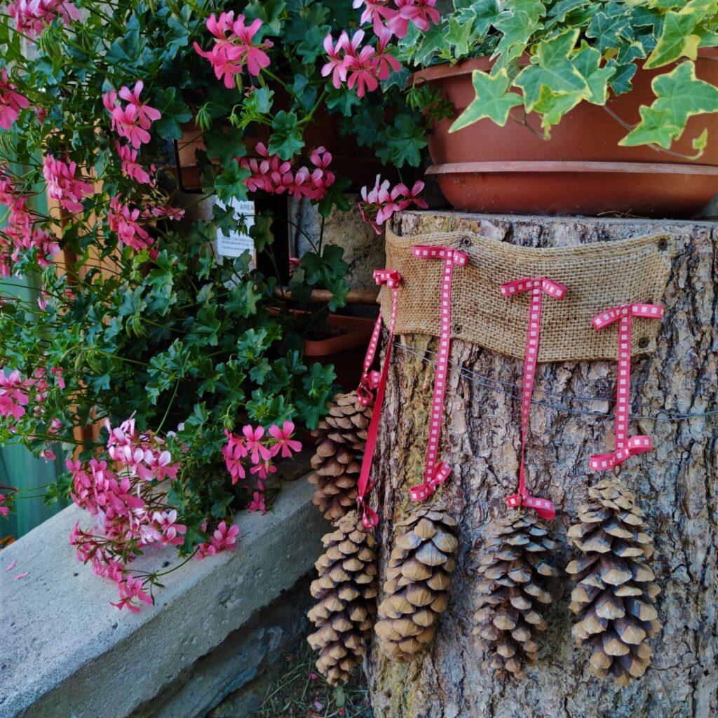 pigne decorative