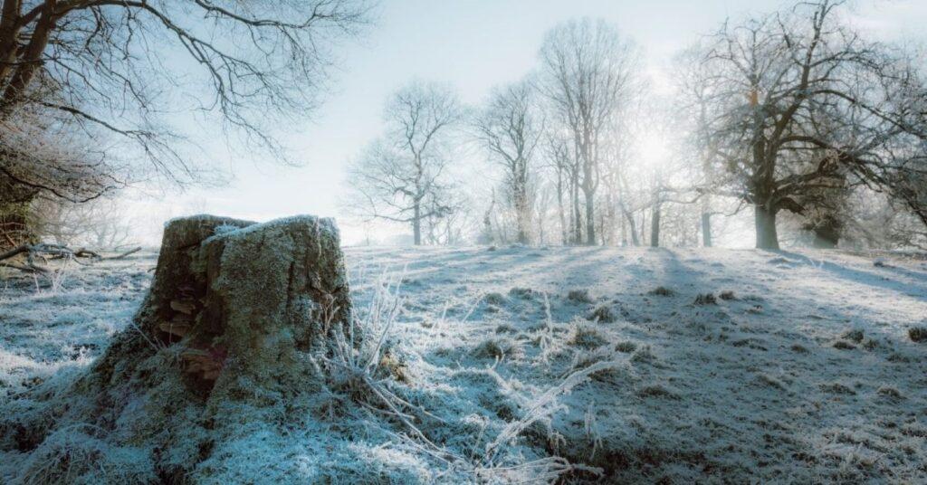 inverno a Glasgow